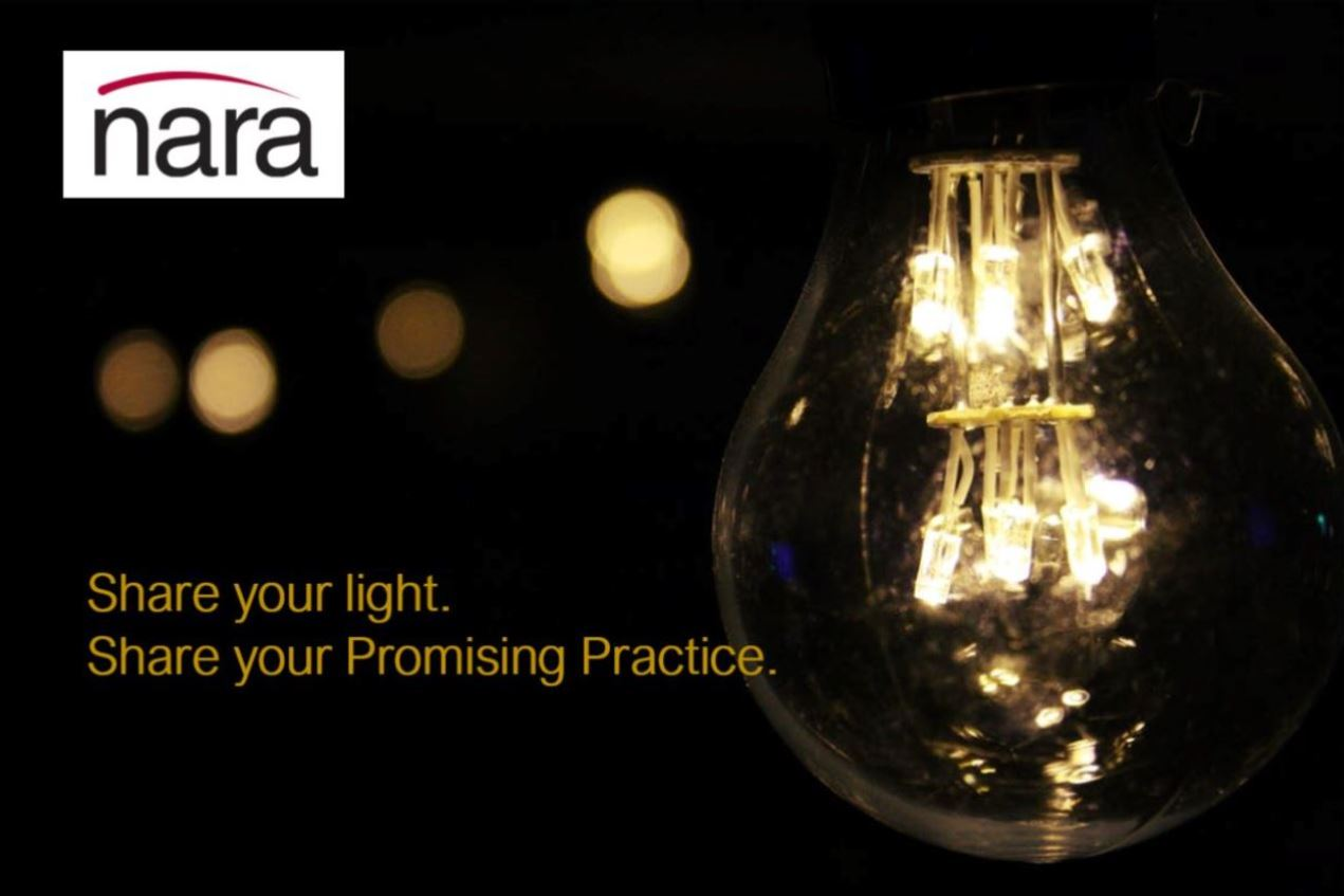 "Light Bulb on the right side of image with the words ""Share your light. Share your Promising Practice."" with the NARA logo to the left hand top corner."